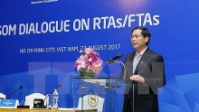 apec economies share experience in engaging in rtasftas