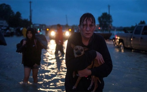 hurricane harvey likely to cost us economy tens of billions of dollars