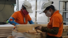 vietnam posts nearly us 5 billion worth of wood exports in seven months