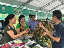 hanoi consumers introduced to son las longan and safe farm produce