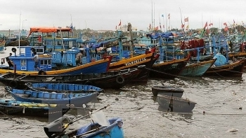 south central coastal localities implement law on fisheries