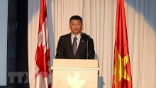 45th anniversary of vietnam canada diplomatic ties celebrated in ho chi minh city