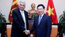 deputy pm vietnam wants to develop ties with sri lanka
