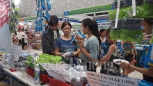 intl east west economic corridor trade fair opens in da nang
