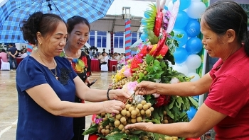 son la launches export of locally grown longan