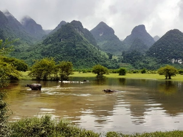 two new destinations in cao bang attract strong interest from investors and visitors