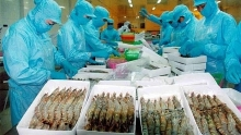 vietnam keeps goal of export value growth at 75 percent in 2019