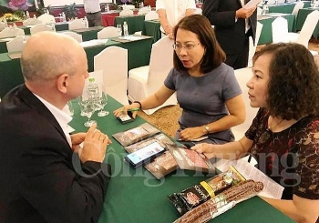 vietnamese polish firms seek stronger partnerships
