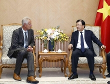 vietnam welcomes german investment in renewable energy deputy pm