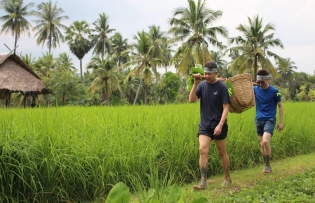 rural tourism in search of sustainable development