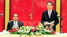 egypt willing to enhance ties with vietnam president
