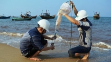 pm approves building marine environmental monitoring system for four central provinces