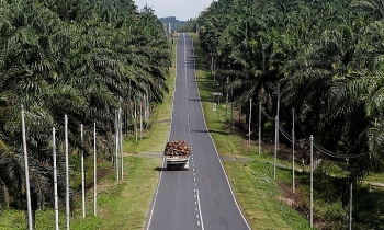 under eu attack malaysia and indonesia rethink trade strategy