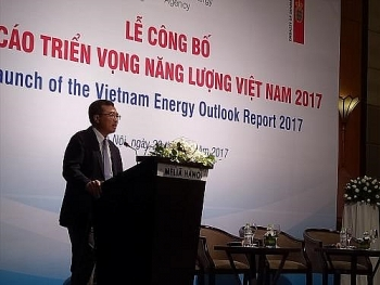 denmark ready to help vietnam in sustainable energy development