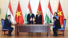 vietnamese pm holds talks with hungarian counterpart affirms valuing ties