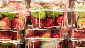nzs foodstuffs pulls australian strawberries off shelves over needle sabotage