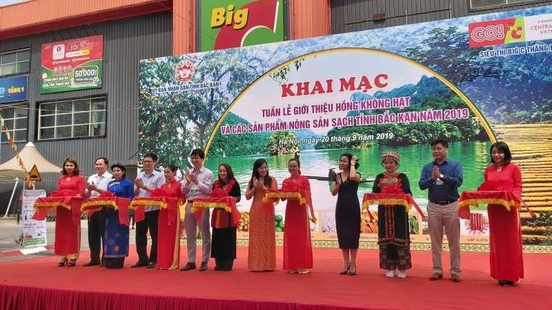 bac can seedless persimmons introduced in hanoi