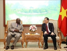 vietnam wishes to further strengthen ties with south africa and nigeria