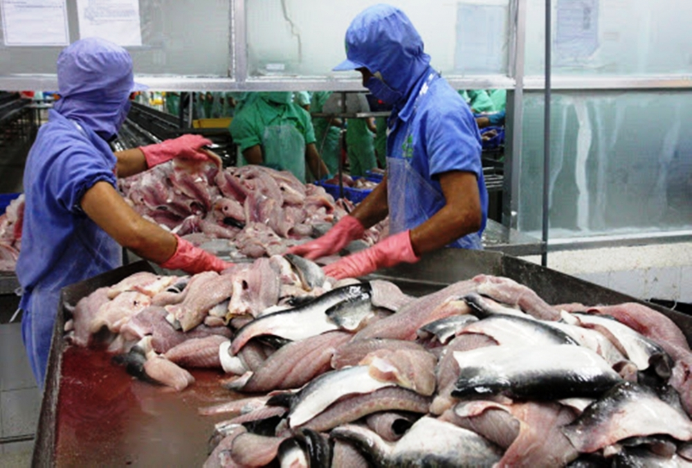 growth opportunities for mekong delta production and export