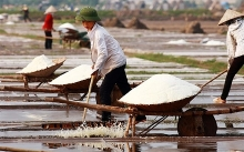 salt price increases middlemen benefit