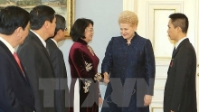 vietnam and lithuania pledge to reinforce ties