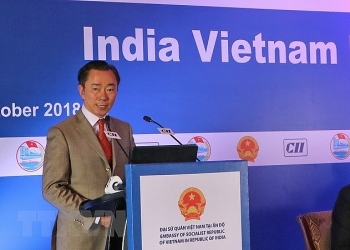 hau giang seeks investment from india