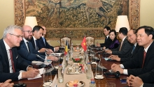 pms hold talks on progress of vietnam belgium relations