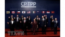 cptpp opens opportunities for vietnamese enterprises to expand market