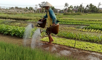 rural areas in vietnams 12 provinces show clear signs of economic progress