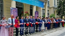 vietnam rok fine arts exhibition opens in hcm city