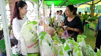 rice exporters advised to prefer quality to quantity