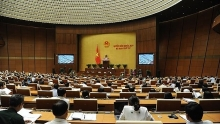 lawmakers discuss special mechanisms to develop hcm city