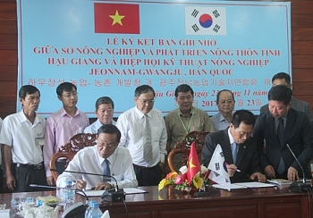 hau giang fosters agricultural cooperation with rok association