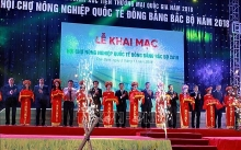 intl agriculture fair for northern region opens in thai binh