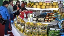 hi tech agricultural fair highlights mekong delta farm produce