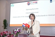 netherlands keen on sharing experience with vietnam in high tech agriculture