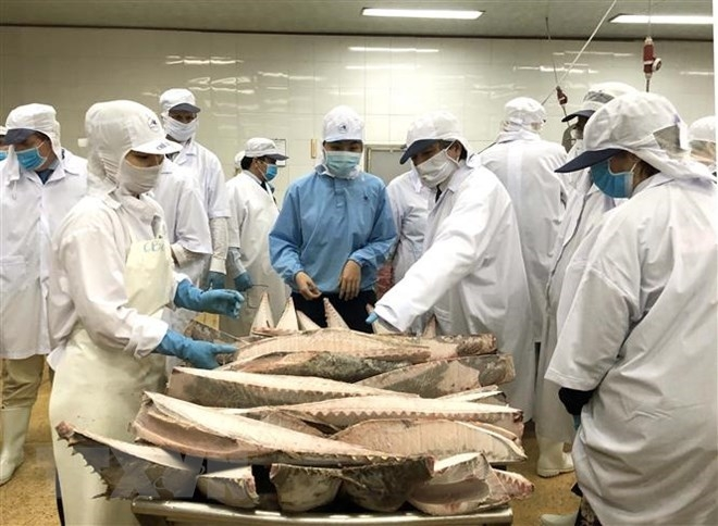 vasep talks about ep fisheries committees iuu fact finding tour
