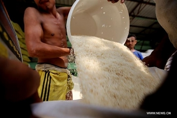 myanmar earns almost us 436 million from rice exports