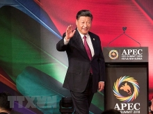 chinese leader urges apec members to work towards open global economy