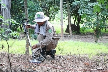 domestic and international efforts boost landmine cleanup