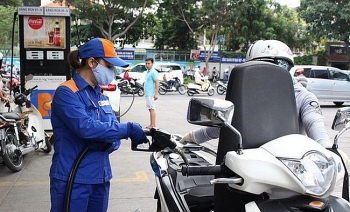 november cpi decreases by 029 on falling petrol prices