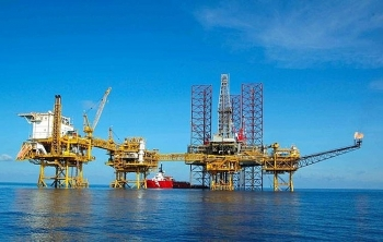 new oil reserve found in bach ho well