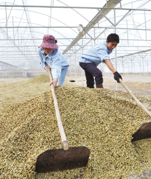 evfta to open up trade opportunities