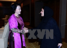 vietnam treasures relations with uae na chairwoman