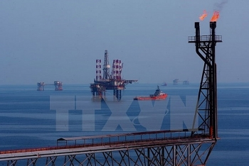 vietsovpetro taps 504 million tonnes of crude oil this year