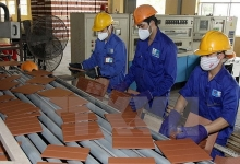 viglacera sets up construction material joint venture in cuba