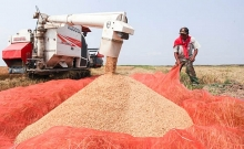 laos to increase rice exports to china in 2017