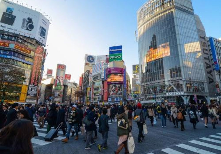 japan logs ninth monthly price fall in november