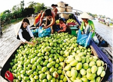 huge potential for fruit and vegetable exports