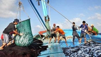 ministry takes actions in response to eus warning of iuu fishing